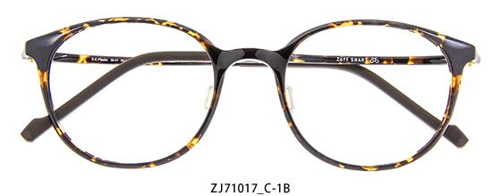 ZJ71017_C-1B